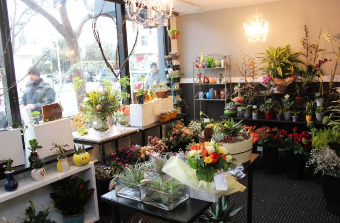 Mission de Flores is a flower boutique just a few blocks away from where Dalia and Marisol sell their flowers, but so far, it has not affected their business. Photo Edgar Pacheco
