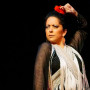 Flamenco_01web