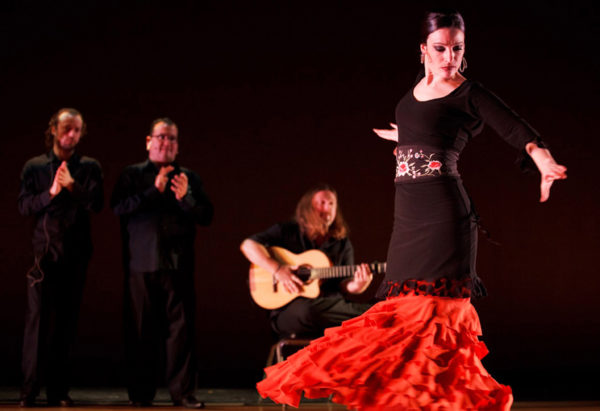 Flamenco_02web