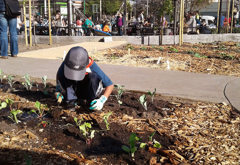 (Above) Community members plant new vegetation during the inauguration of the In Chan Kaajal park at 17th & Folsom streets. Photo: Nancy Pili