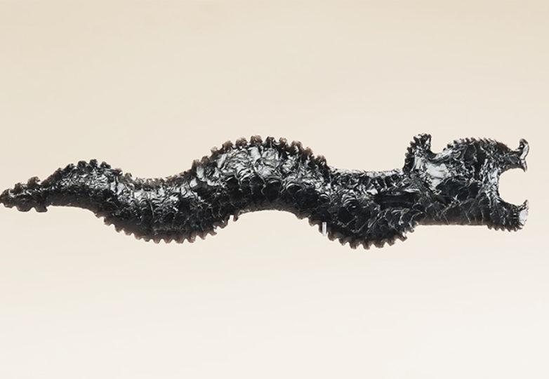 Eccentric, 200–250. Obsidian, Foto por Jorge Pérez de Lara Elías/INAH. Cortesía: Fine Arts Museums of San Francisco