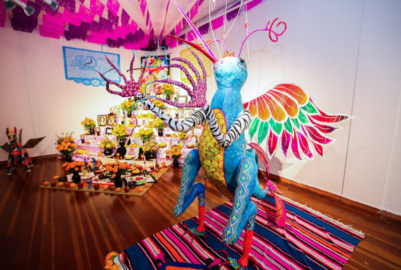 Día de Muertos altars are exhibited  at the Mission Cultural Center, on Thursday, Nov. 2, 2017. Photo: Ekevara Kitpowsong
