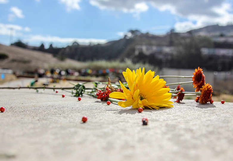 Flowers lead a path towards the Community Farm Opening Celebration at Crocker Amazon Park, Nov. 12. Photo: Adelyna Tirado