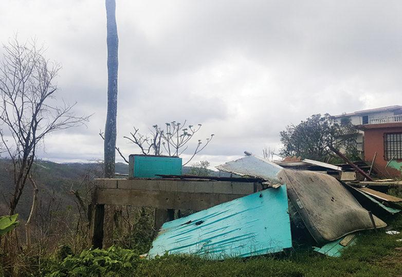 Puerto Rico tras el paso del Huracán María. Cortesía: Erin Carrera