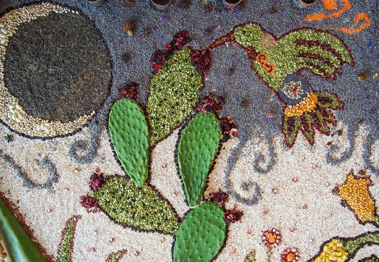 Altar de semillas para la Tierra, el Sol y la Luna, creado por el programa Common Roots de PODER. Foto: Mabel Jiménez